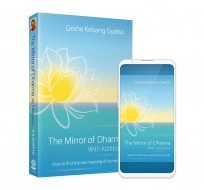 mirror of dharma with additions 3d paperback front and ebook phone android cover combo 2019 04 web